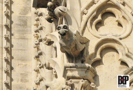 A Notre Dame gargoyle.