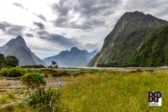 New Zealand-©Brad-Bell-Photography.jpg-0222