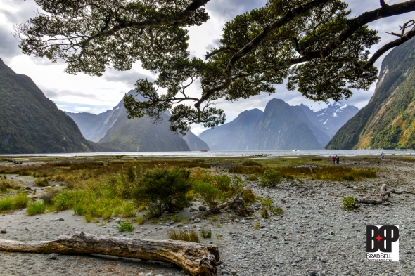 New Zealand-©Brad-Bell-Photography.jpg-0224