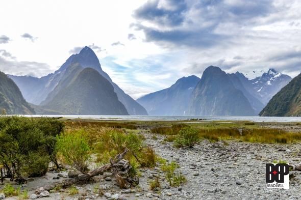 New Zealand-©Brad-Bell-Photography.jpg-0244