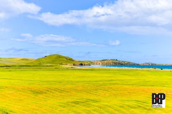 New Zealand-©Brad-Bell-Photography.jpg-9808