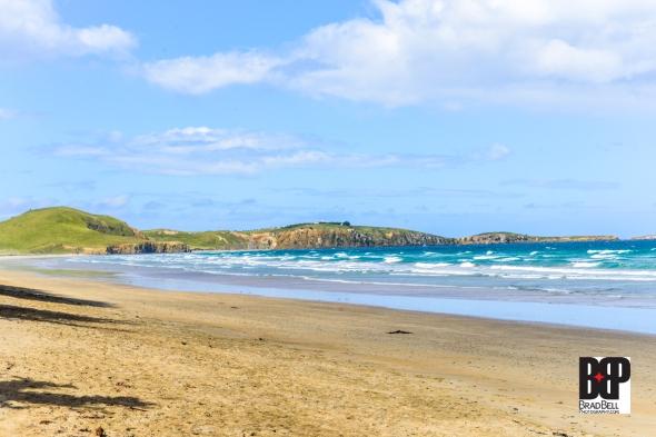 New Zealand-©Brad-Bell-Photography.jpg-9811
