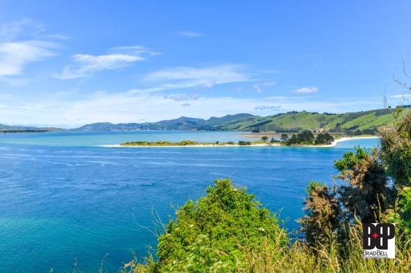New Zealand-©Brad-Bell-Photography.jpg-9856