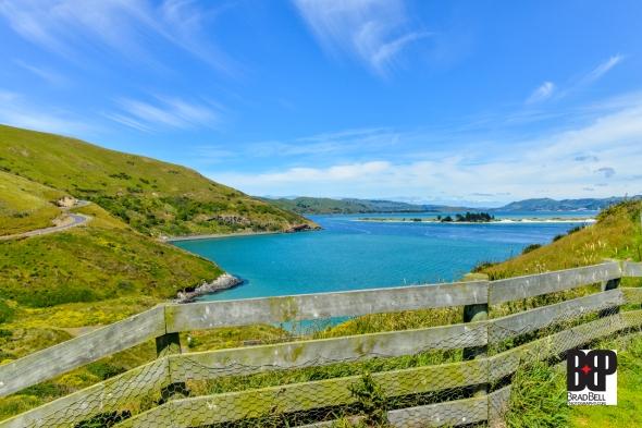New Zealand-©Brad-Bell-Photography.jpg-9886